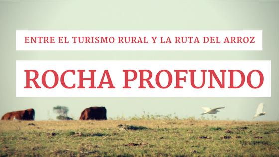 Entre el Turismo Rural y la Ruta del Arroz: Rocha profundo